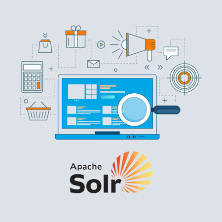 Picture for category Solr Search Services