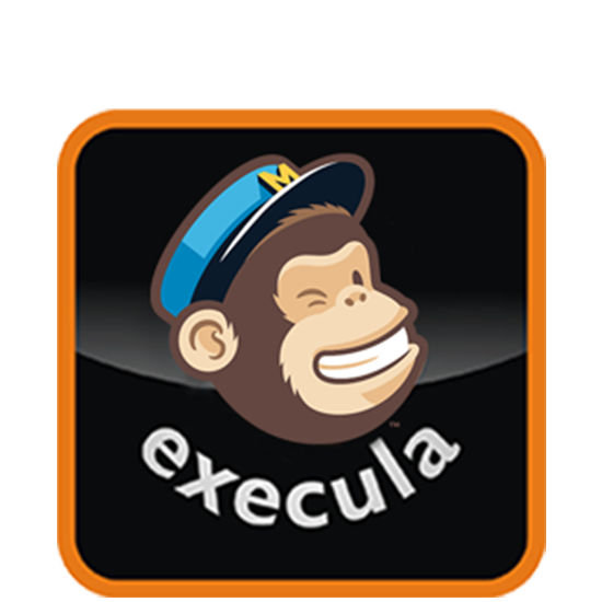 Picture of Mail Chimp