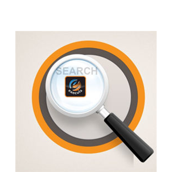 Picture of Solr Search