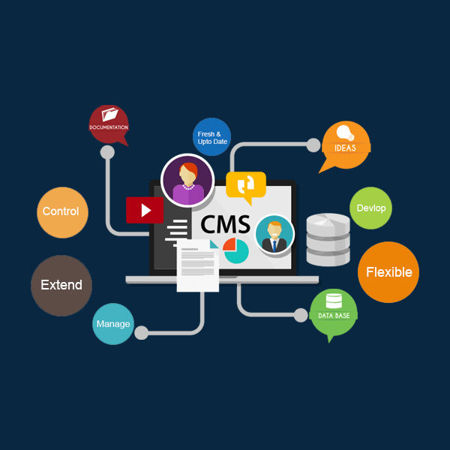 Picture for category CMS Development